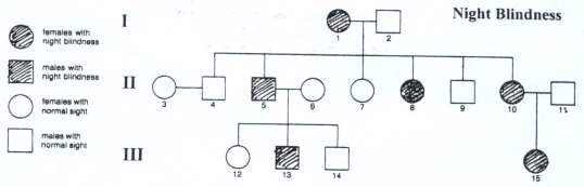 Pedigree Charts Genotype Example http://www.mr-damon.com/homework/3e/3e_pedigrees.htm